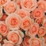 ロマンチックは女性の憧れ♡ムード100%バスルーム特集