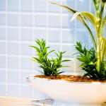 【新生活にぴったり】狭さを感じさせない!100均セリアで手に入る浴室簡単アレンジ術