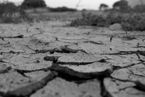乾燥してひび割れた大地