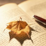 【読書の秋】カナメ・ジョンセレクト!おふろで読みたい短編集3選!