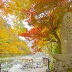 秋満載♡紅葉を愛でる絶景温泉3選