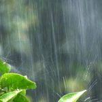 【みんな知ってる??】梅雨の季節湯!!