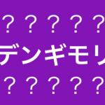 【韓国発!】デンギモリって知っていますか??