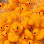 【爆笑】お風呂に○○を大量に浮かべてみた!