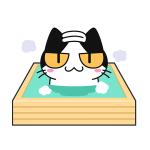 お風呂で更にリラックス!檜風呂の効能について